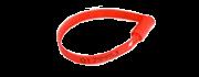 WeSEAL, sigilli sicurezza antieffrazione, modello Ring Seal