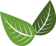 green ecodictionary icon with two leaves symbolizing the compostable concept